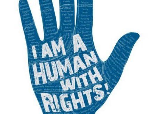 ადამიანის რომელი ძირითადი უფლებები ირღვევა საქართველოში, უფრო მეტი თქვენი სამართლებრივი უფლებების შესახებ